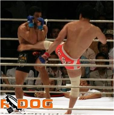 Kazushi Sakuraba - The Gracie Hunter