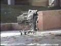 Robot Shopping Cart
