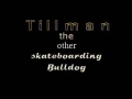 Tillman the Skateboarding Bulldog - Episode 1